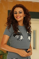 seerat-kapoor-hot-and-spicy-pics-03