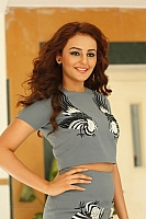 seerat-kapoor-hot-and-spicy-pics-05