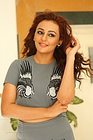seerat-kapoor-hot-and-spicy-pics-21
